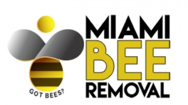 Bee Hive & Honey Removal Miami | Miami Bee Removal Corp