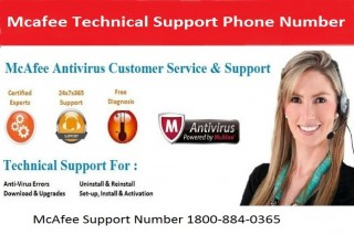 Dial 1-800-884-0365 McAfee Technical Support Number