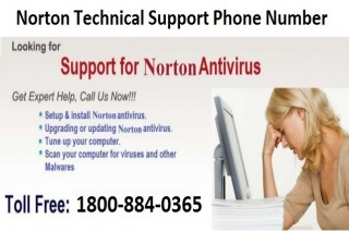 Dial 1-800-884-0365 Norton Technical Support Number