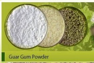 Distributor of Cassia Gum Powder