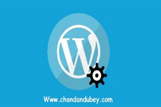 Hire web developer India