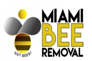 Bee Removal Service in Florida