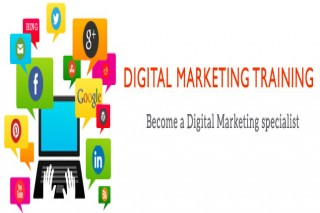 Digital Marketing Training In Noida