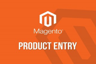 Our group will collaborate with you to take your Magento Bulk Listing
