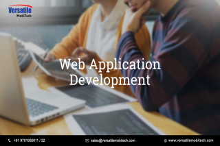 web application development company in hyderabad