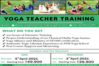 200-Hour Certification — Mindful Yoga Therapy